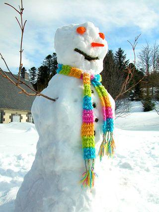 Bonhomme-de-neige_24-jan-2010